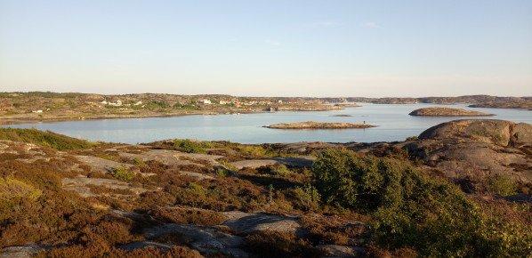 Into the wild (Suède) – 31 mai au 12 juin 2018