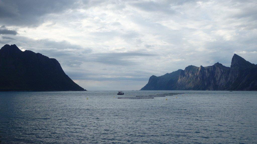 île Senja